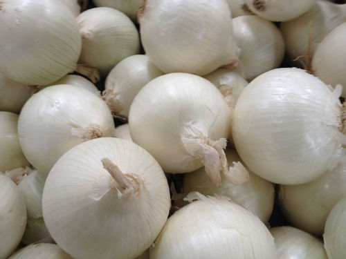 Onion Sets Snowball 250g's Approx 80 - 100 Sets