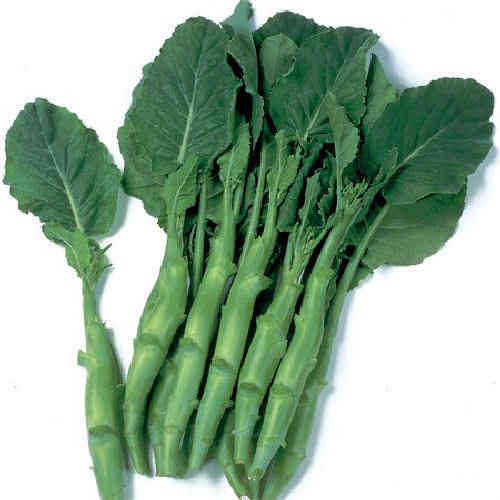 Kailaan Chinese Broccoli 110 .56g Veg Seeds