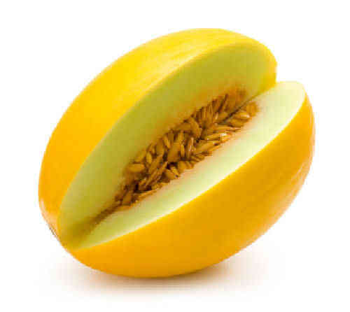 Melon Honeydew 10 Fruit Seeds