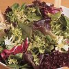 Lettuce BabyLeaf Harvest Blend Salad Mix 860