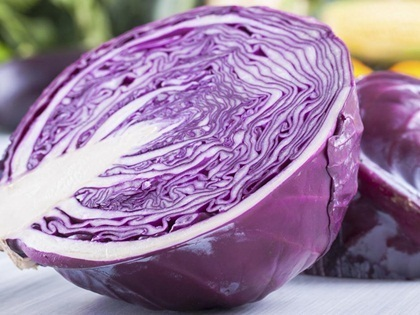Cabbage Red Mars 450 (1.6g) Vegetable Seeds