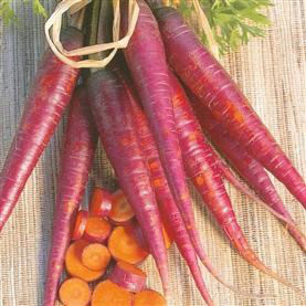 Carrot Cosmic Purple 700 Vegetable Seeds