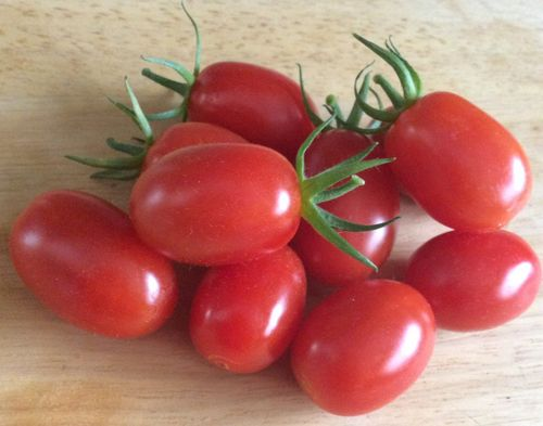 Santonio F1 Cherry Plum Tomato 5 Vegetable Seeds